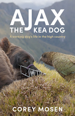 Ajax collie cross conservation dog staring at a kea bird, book by Corey Mosen