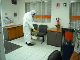 Cleaner Dominicana Servicio De Fumigación Tratamiento De