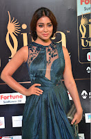 Shriya Saran in Beautiful Transparent Dark Gown IIFA Utsavam Awards 2017 035.JPG