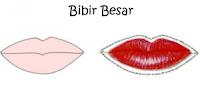 pribadi wanita lewat bentuk bibir