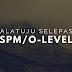 Halatuju Selepas SPM/O-Levels