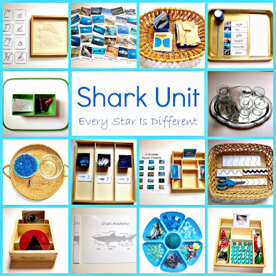 Shark Activities with Free Printables