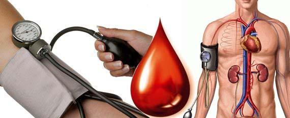 Selain Mengobati Hipertensi, ini 5 Manfaat Tersembunyi dari Buah Mengkudu