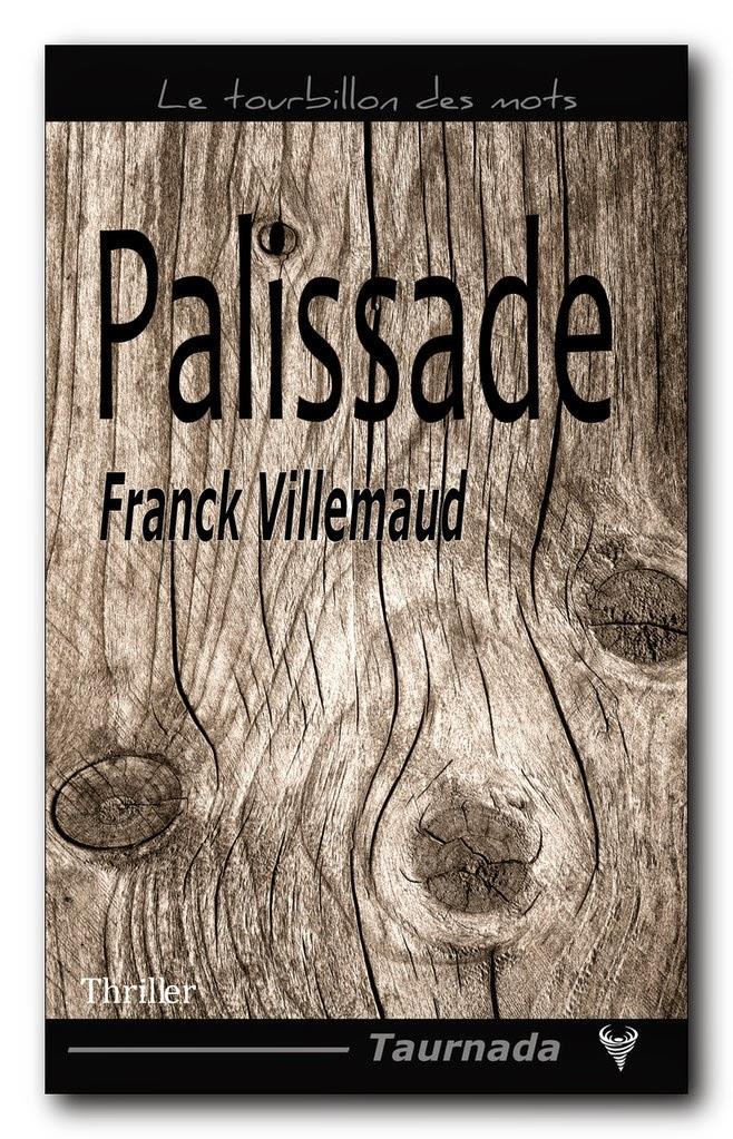 http://lesreinesdelanuit.blogspot.fr/2015/02/palissade-de-franck-villemaud.html