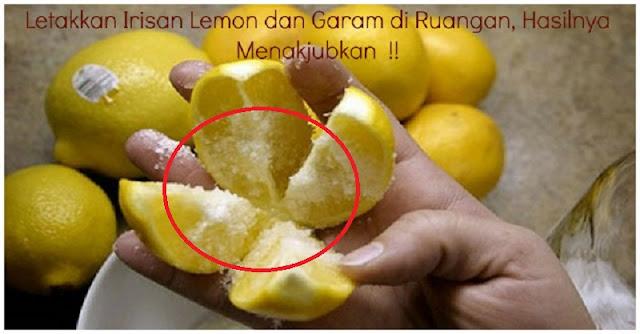 Letakkan Irisan Lemon dengan Garam Di Dalam Kamar!! Hasilnya Sungguh Menakjubkan dan Banyak Manfaat !!