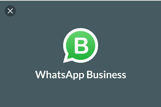 Whatsapp launches the Whatsapp Business app version for Company/Organization  owners to use