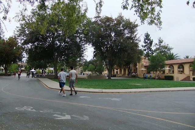 stanford-univ-road スタンフォード大学内部