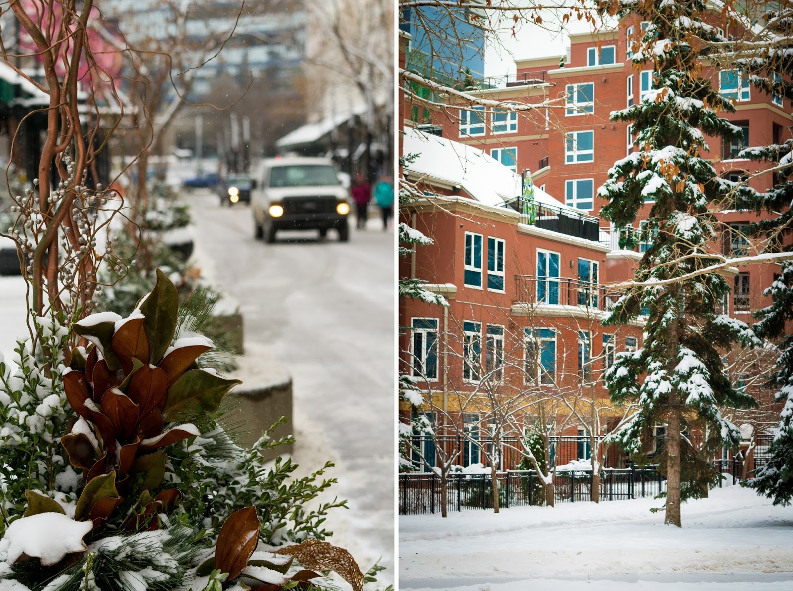 Calgary in Winter snow