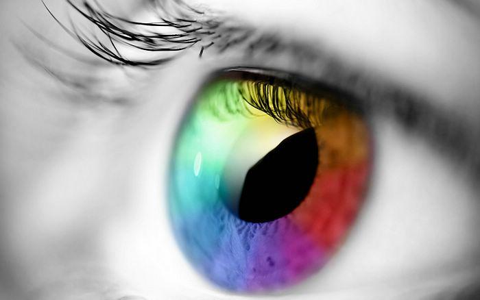 Por qué tenemos los iris de colores