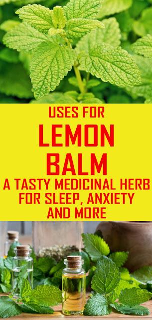 LEMON BALM USES YOU NEED TO KNOW!