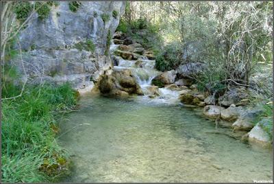 Desembocadura del Arroyo Del Obriguillo en el Río Escabas