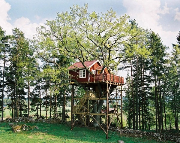 5 Houses In Trees That You Will Love 13