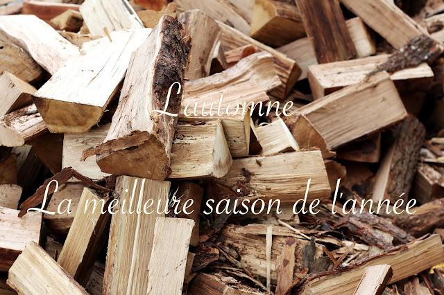http://www.ajcpourvous.com/2016/10/lautomne-la-meilleure-saison-de-lannee.html