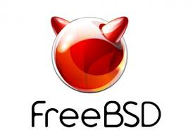 FreeBSD Wget Commands