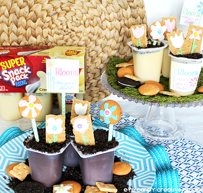 snack pack, pudding cups, flower graham cookies, bloom, freebie