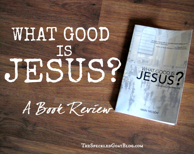 "book review ""what good is Jesus"" Marv Nelson"