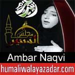 https://www.humaliwalyazadar.com/2018/09/ambar-naqvi-nohay-2019.html