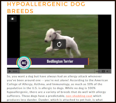 http://www.akc.org/about/faq-allergies/