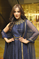 Angela Krislinzki at Hi Life Exhibition Curtain Raiser 20.JPG