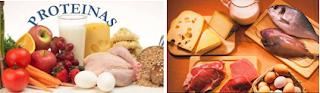 consumir proteínas