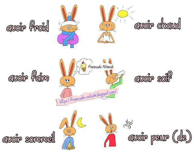 Wyrażenia z czasownikiem avoir - wyrażenia 1 - Francuski przy kawie
