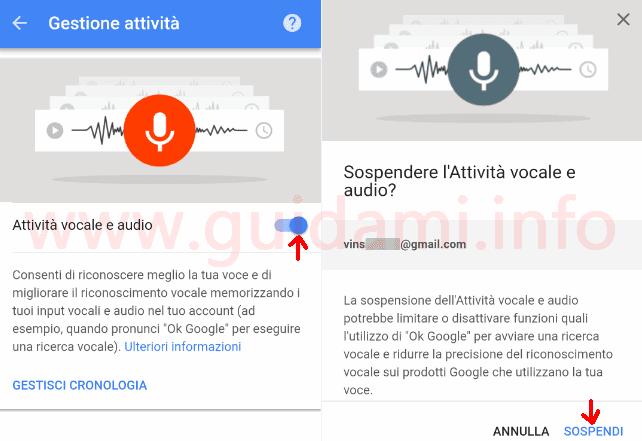 Disattivare la cronologia Attività vocale e audio dell'account Google