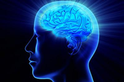 Cara-Cara Meningkatkan Kecerdasan Otak