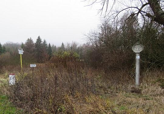 Przełęcz Dujawa (557 m n.p.m.).