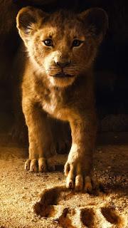 Lion baby Mobile HD Wallpaper