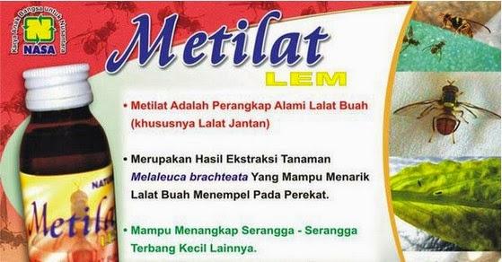 Metilat Lem Distributor Nasa Aceh