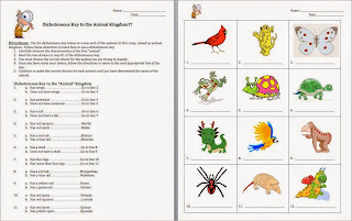 Amy Brown Science Dichotomous Classification Keys border=