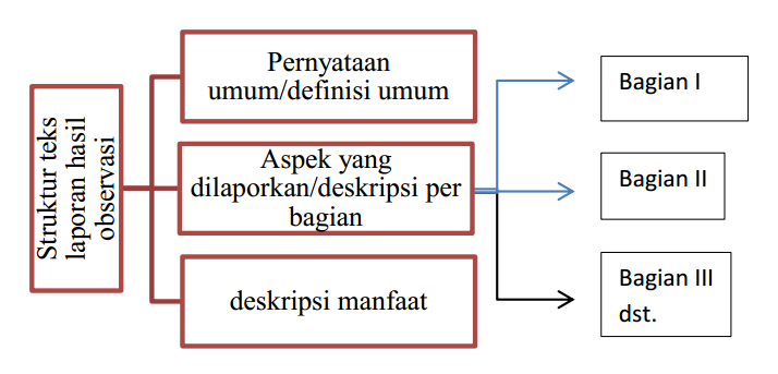 Teks Laporan Hasil Observasi Pengertian Fungsi Struktur Dan Ciri Kebahasaan Zuhri Indonesia
