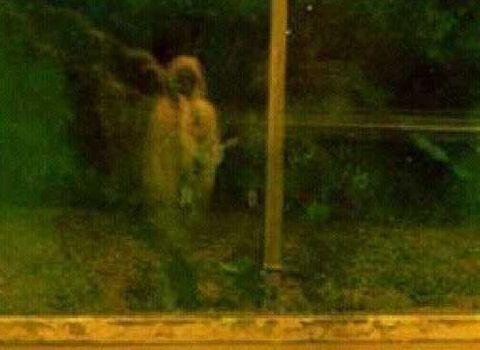 gambar foto penampakan hantu asli dan nyata-5
