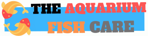 The Aquarium Fish Care