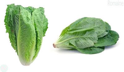 Romaine greens