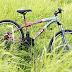 Xe đạp địa hình giá rẻ chính hãng nên mua hãng nào tốt?
