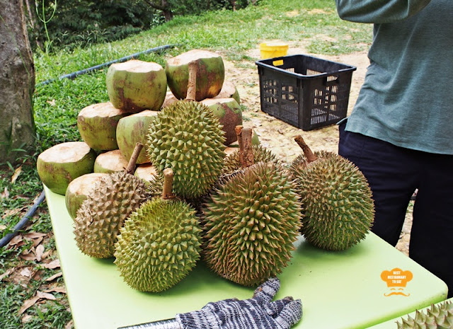 Bentong Durian Buffet Stall at Durian Wonderland