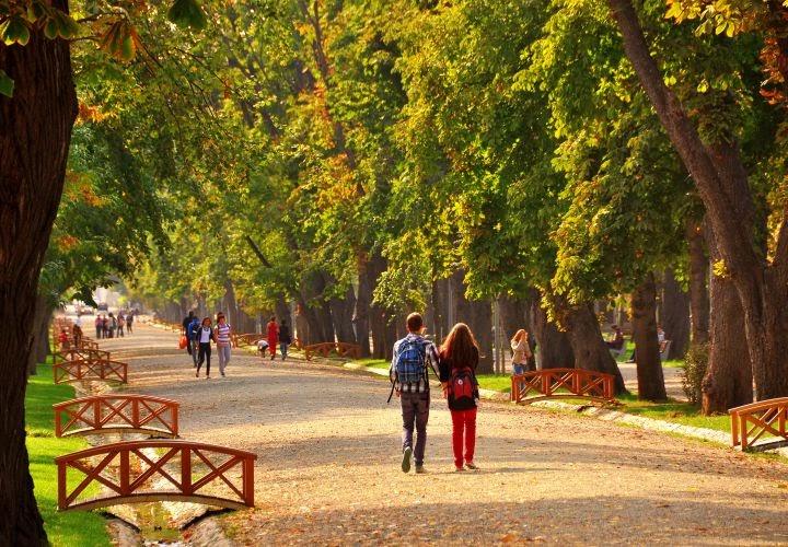 Cluj Central Park
