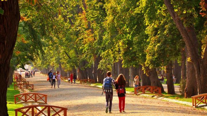 """Simion Barnutiu"" Central Park"