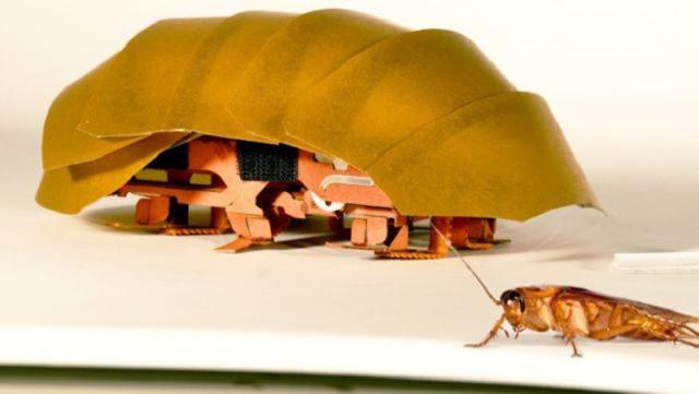 潰されても死なない?ゴキブリを応用したロボット?注意:ゴキブリさん出演中【n】】