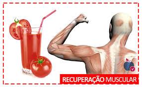 A importância da recuperação muscular para a saúde - Clínica de Massagem Terapêutica e Quiropraxia em São Jose SC (48) 3094-5746
