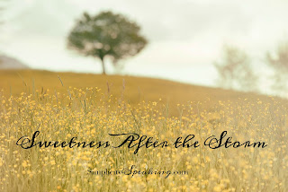 Simplicity Speaking | Sweetness After the Storm