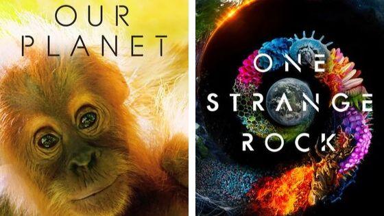 Deux documentaires Netflix à voir absolument pour devenir écolo.