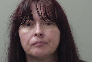 Alabama Mail Carrier Arrested For Feeding Dog Meatballs Laced With Nails