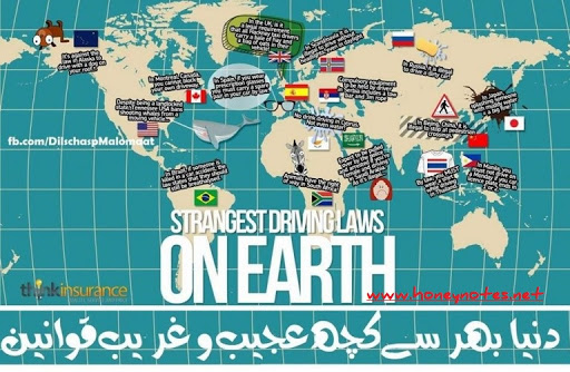 13 Funny International Laws You'd Never Know Were Real Top 10 Craziest Laws From Around The World only women bleed: menstruation and prayer in Islam weird laws around the world 2015 strange laws in pakistan strange laws in romania unusual laws around the world best laws around the world weird laws in india top 10 weirdest laws in the world craziest laws in the world 17 Stupid Laws From Around The World That Make No Sense At All