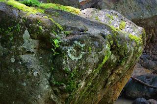 Boulder in Rio Viejo, Puriscal, Costa Rica