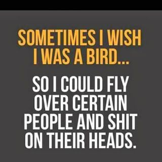 i wish funny quotes on life