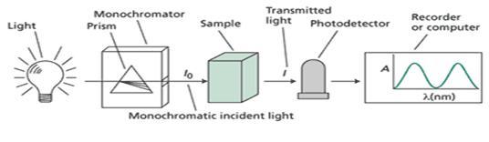 Spektrofotometer UV Vis Val Rein s blog