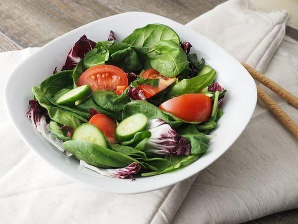 salada crua. tomate, repolho roxo, couve e pepino, cortados.