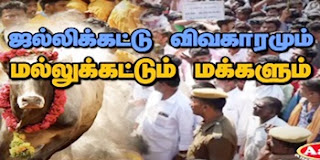 Sathiyam Sathiyame 17-01-2017 Jallikattu issue and protesting people – Sathiyam Tv